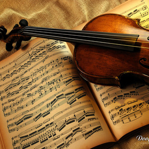 Dooffy-design-net-music-violin-001-1024